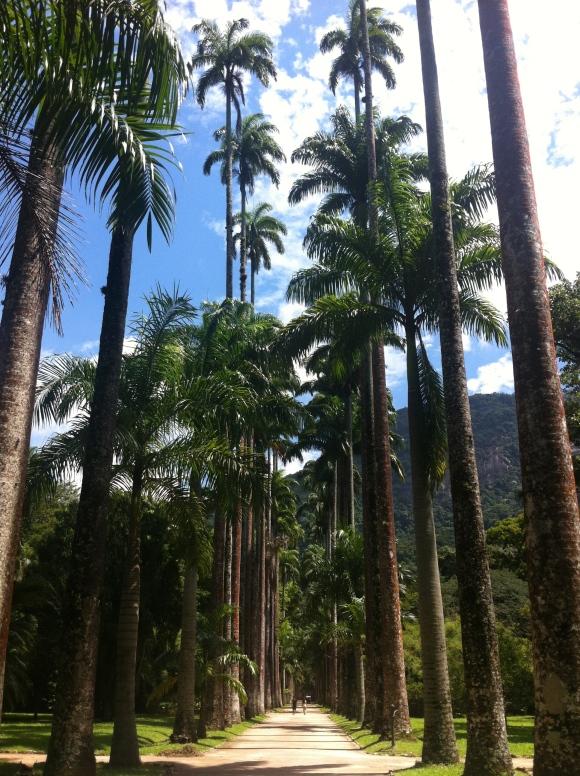 Jardim Botânico é muito amor!